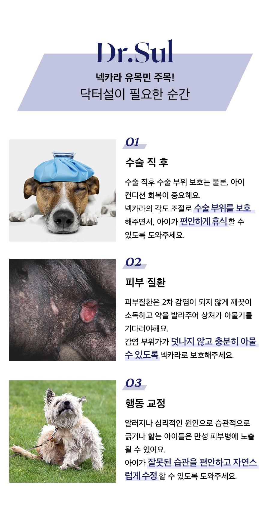 닥터설 각도조절 넥카라 (옐로우/블루/네이비)-상품이미지-5